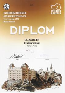 Diplom z první výstavy
